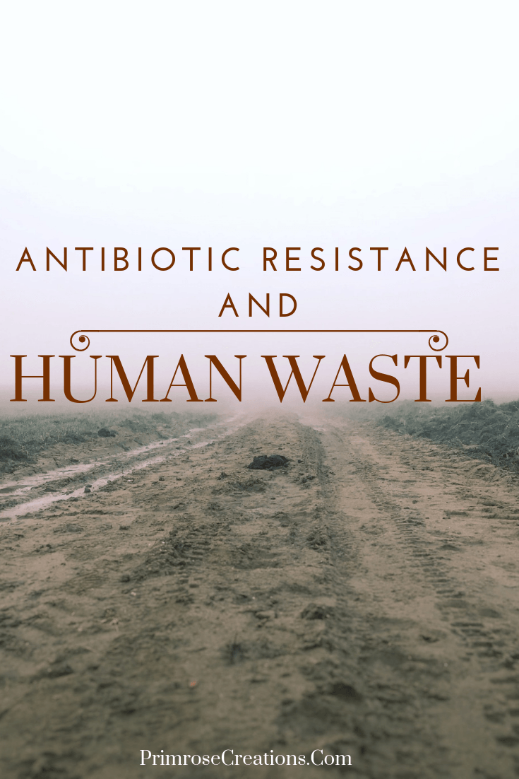 Human and animal waste isn't a popular topic to talk about unless you're a researcher who studies antibiotic resistance! New information may change the way agriculture and pharmaceutical companies address the topic of waste. #PrimroseCreations #LoveTheLifeYouLive #ScienceBehindItAll #Agriculture #Farming #Pollution