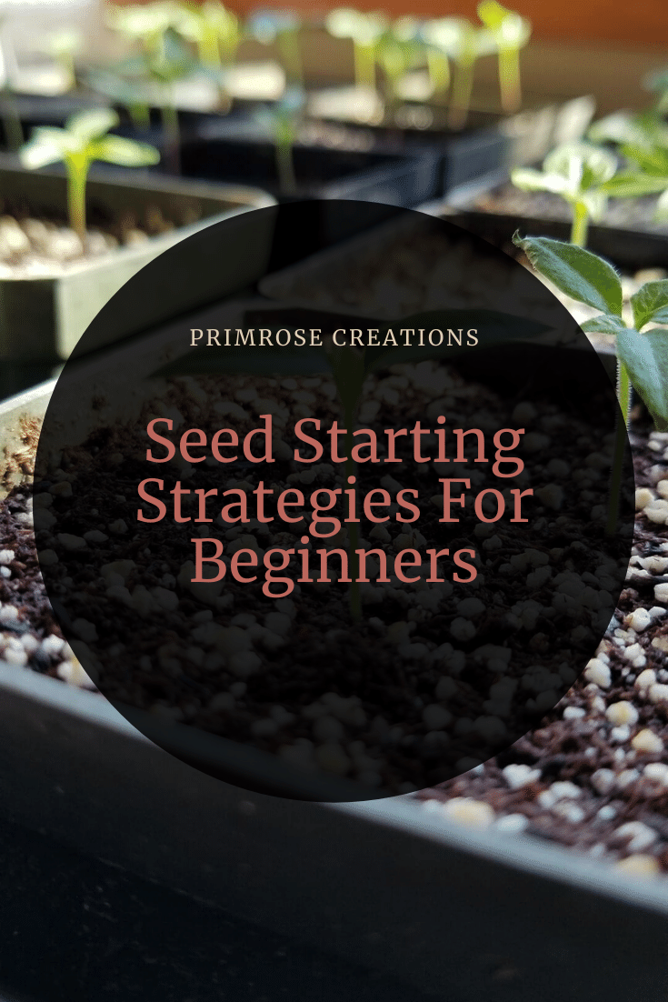 As winter nears, the thoughts of spring loom overhead and seed starting can feel overwhelming. In this post, learn about the importance of your supplies.