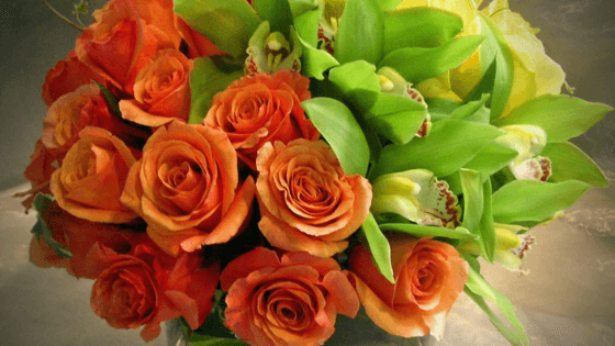 Head into this St. Patrick's Day with all the floral inspiration you will need. From color boards to fun facts, St. Patrick's Day will be a success! #PrimroseCreations #FloralInspiration #StPatricksDay