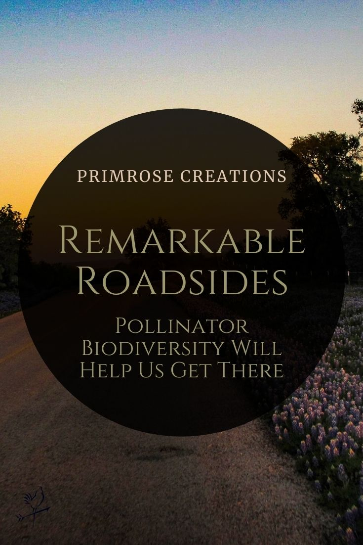 Maintained roadside verges can support vulnerable pollinator habitats with a little ingenuity and simple solutions.
